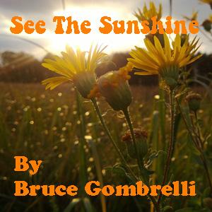 See The Sunshine